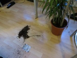 It wouldn't be a dinner party without a toppled plant! (Thanks ahem to the WIND