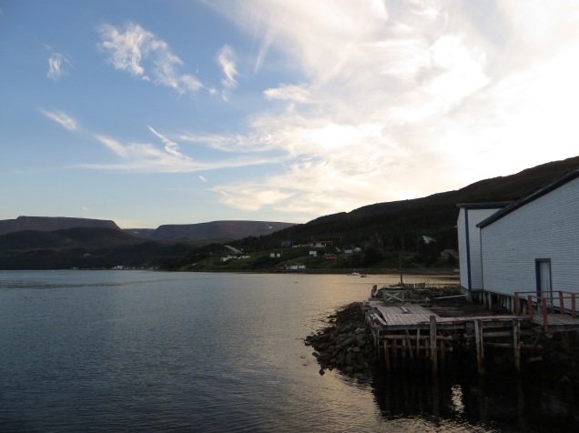 Newfoundland 1128